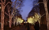 Columbia University holiday lights
